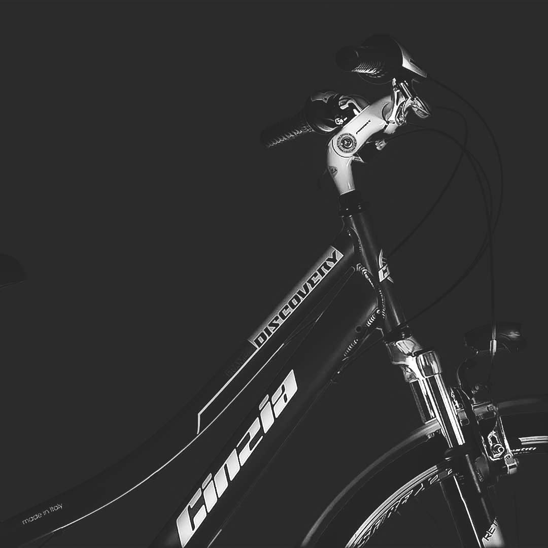 Immagine 2 cicli cinzia